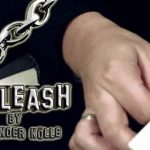 05555-Unleash by Alexander Kolle